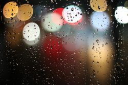 Window Lights Rain